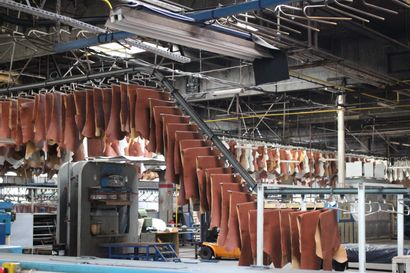 FRANCE TANNERIE