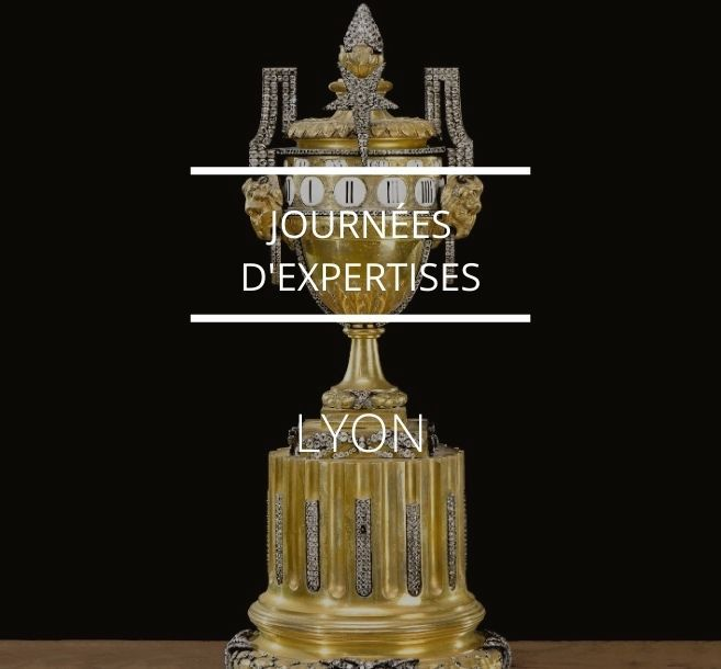 JOURNÉE D'EXPERTISES À LYON