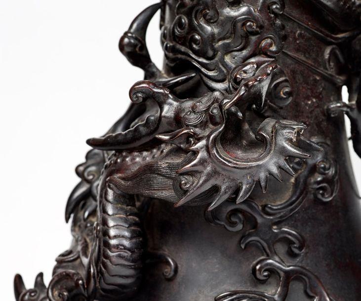 Furieux dragon