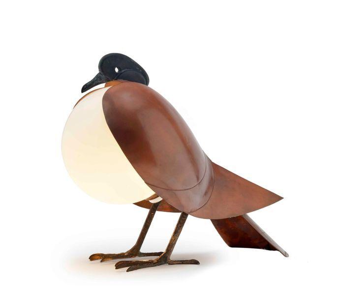 Pigeon éclairé