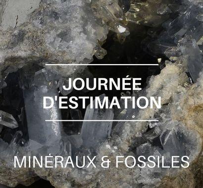 JOURNÉE D'ESTIMATIONS MINÉRAUX ET FOSSILES