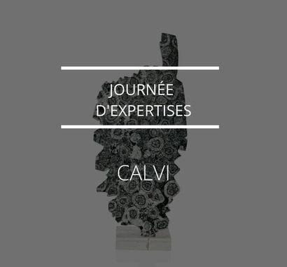 JOURNÉE D'EXPERTISES À CALVI