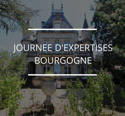 JOURNÉE D'EXPERTISES EN BOURGOGNE