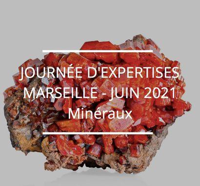JOURNÉE D'EXPERTISES GRATUITES ET CONFIDENTIELLES - MINÉRAUX - MARSEILLE