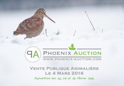Vente publique d'art animalier le 4 mars 2016 !