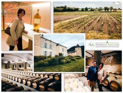 Collection privée de 600 bouteilles de Château d'Yquem à vendre