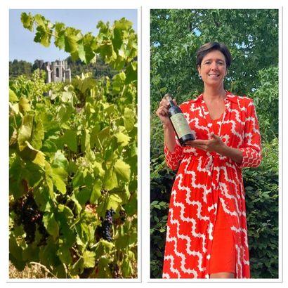 Vente aux enchères de vins en préparation