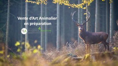 VACATION ANIMALIA & ANTIQUITES EN PREPARATION