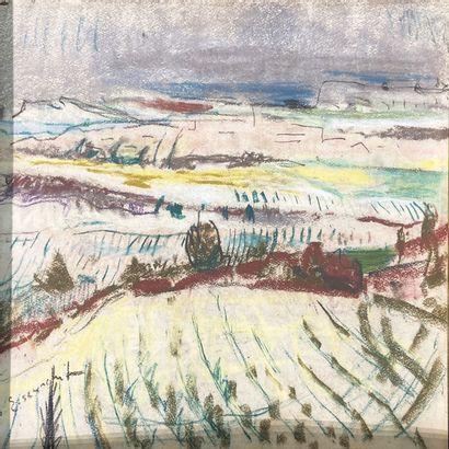 Willy Eisenschitz et les paysages