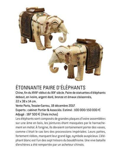 ÉTONNANTE PAIRE D'ÉLÉPHANTS
