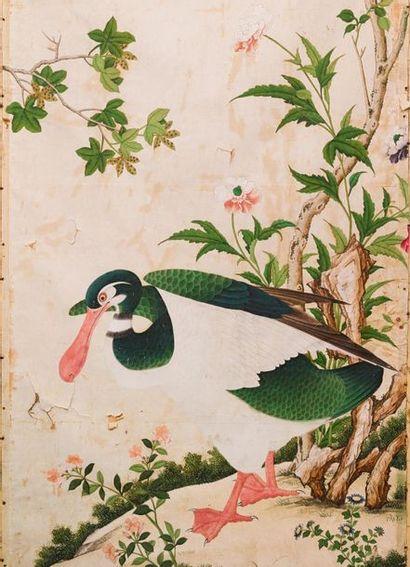 Collection d'un ancien diplomate à Pékin