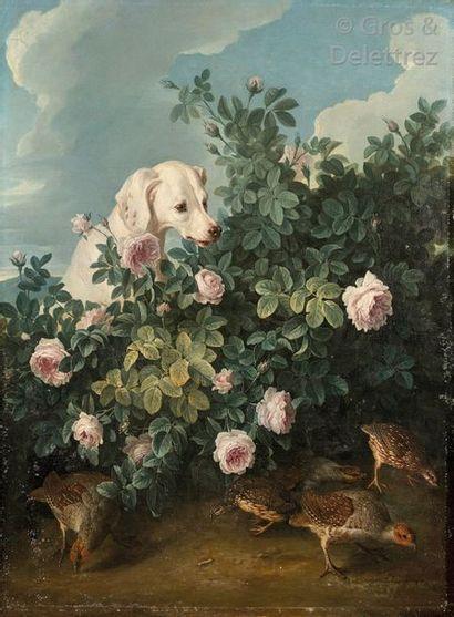 Alexandre-François DESPORTES (Champigneulle 1661- Paris 1743)