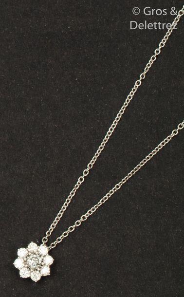 Chaine et pendentif «?Fleur?» en or gris,...
