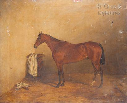 William I LUKER (1828-1905)