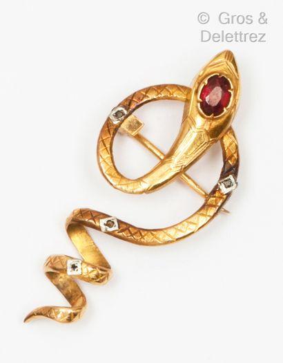 Broche « Serpent » en or jaune, la tête ornée...