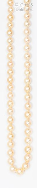 Collier en chute de perles de culture japonaise...