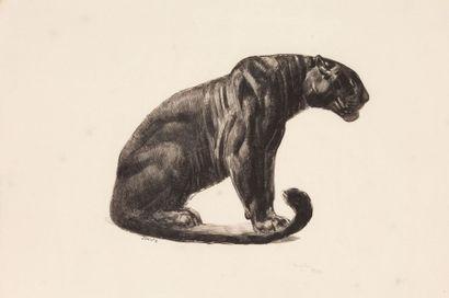 Paul JOUVE (1878-1973)
