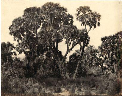 Maxime Du Camp (1822-1894) Haute Egypte. 1850.