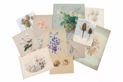 Carton de dessins, aquarelles, pastels. Dessins...