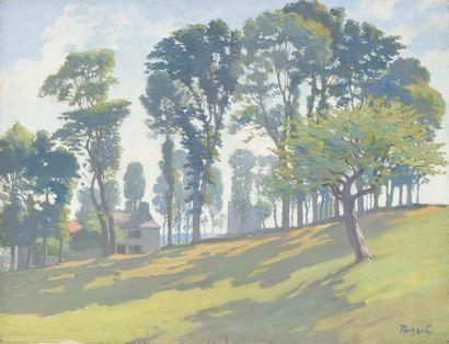 • Les arbres aux enrivonrs d'Yssingeaux  •...