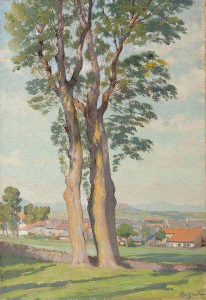 • Deux grands arbres à Yssingeaux  • La porte...