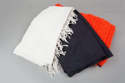 ESCADA by Margaretha Ley, Sophie D'HOORE Lot de deux écharpes en laine et cachemire...