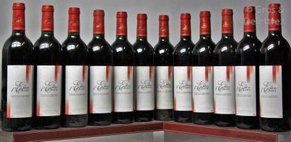 12 bouteilles LANGUEDOC -