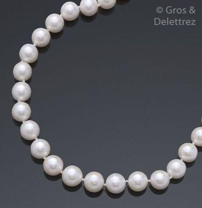 Collier de perles de culture, le fermoir...