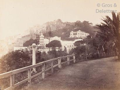Alfred Magny  Algérie, c. 1860.  Alger, jardin...