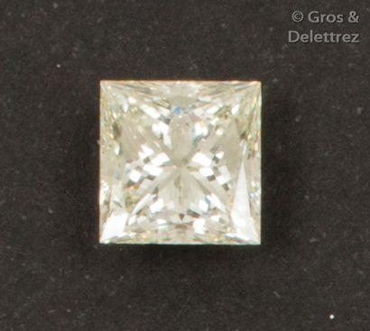 Diamant sur papier de taille princesse calibrant...