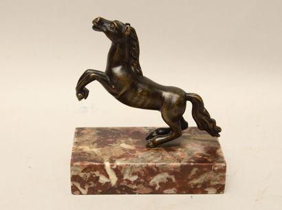 Ecole du XIXème siècle  Cheval cabré  Bronze...