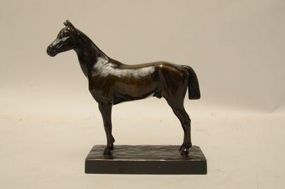 DUBUCAND Alfred (1828-1894)  Cheval à l'arrêt...