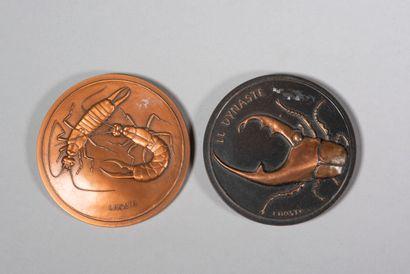 Lot de deux médailles  LHOSTE  Perce-oreille...