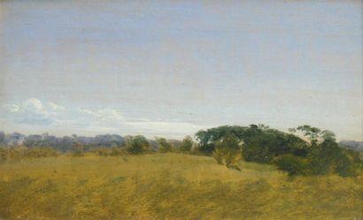 Peter Christian SKOVGAARD (1817-1875)