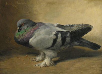 N.P. RASMUSSEN (1847-1918)