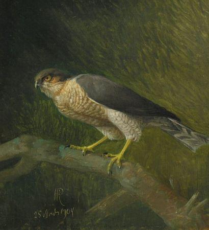 N. P. RASMUSSEN (1847-1918)
