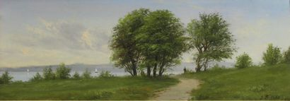 Johannes BOESEN (1847-19l6)