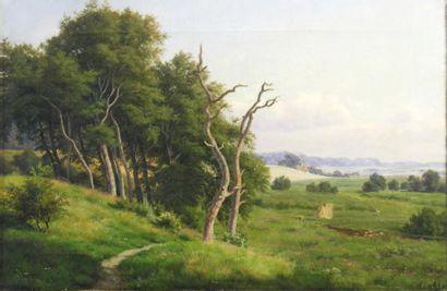 Thorald BRENDSTRUP (1812-1883) Ramassage du bois en forêt Huile sur toile monogrammée...