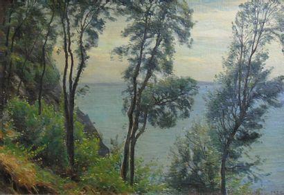 Sigvard HANSEN (1859-1938)