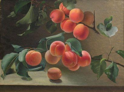 Carl BALSGAARD (1812-1893)