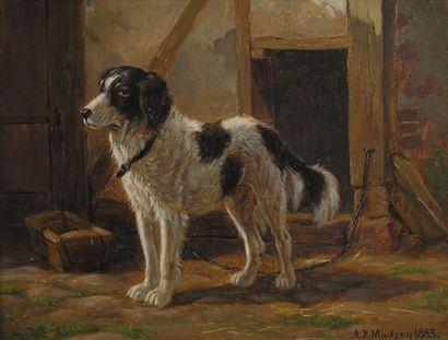 Andreas Peter MADSEN (1822-1911)