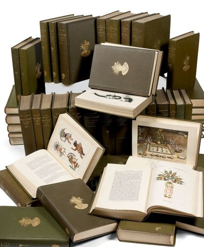 DOCUMENTATION Suite des « Annual Report of...