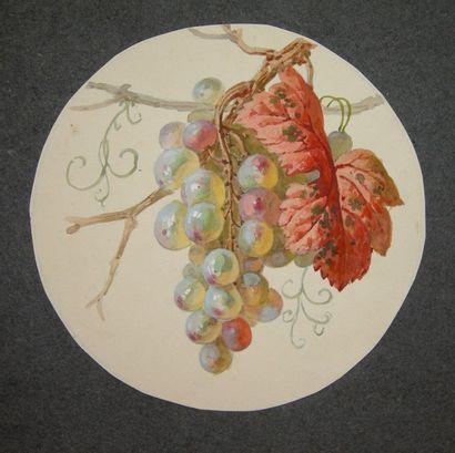 Narcisse VIVIEN  Etude de fruits  Ensemble...