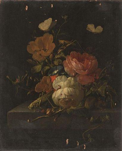 Elias van den BROECK (Anvers 1650 Amsterdam 1708) Bouquet de fleurs, insectes et...