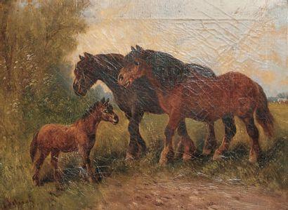 Henry SCHOUTEN - 1864-1924