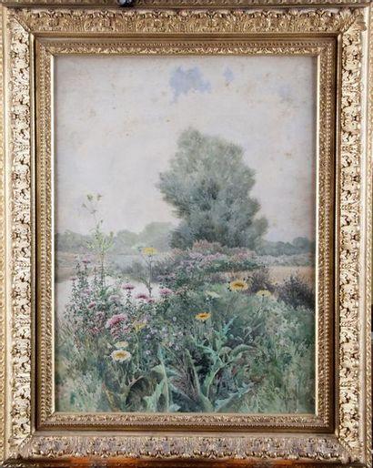 J. HENRY, XIXe siècle