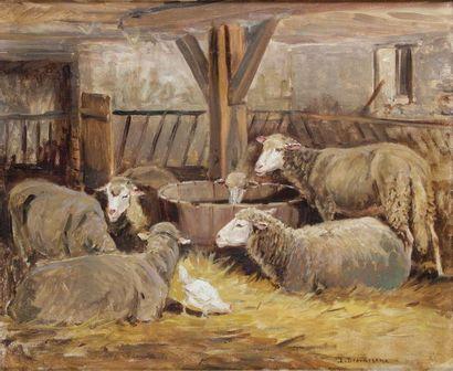 James DESVARREUX-LARPENTEUR - 1847-1937