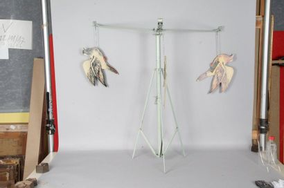 Tir aux pigeons EUREKA - Jeu de Badminton...