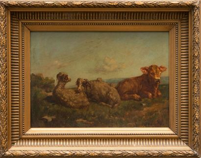 François SIMON (1818-1896) Moutons et veau. Huile sur panneau. Signée en bas à droite....