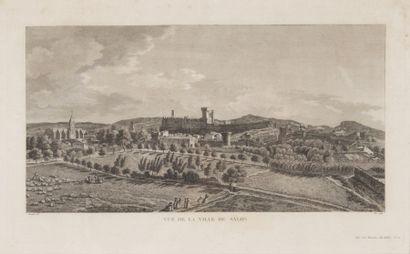 Gravure vue de la ville de Salon XIXème siècle....